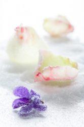 11.02.13-Flores-cristalizadas-con-azucar-466x700